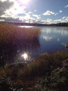 Luonto auttaa rauhoittumaan ja jaksamaan... Naturen ger mig ro och kraft.